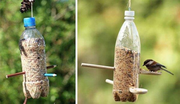 Tái chế chai nhựa thành nhà bếp cho những chú chim