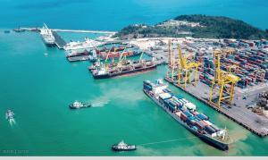Tra cứu container cảng Đà Nẵng