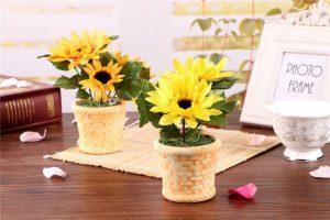 Hoa hướng dương mang sắc hoa vàng giàu sang