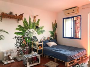 Cây xanh cũng là một ý tưởng khá hay để trang trí phòng trọ sinh viên